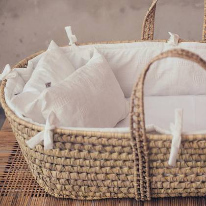 Moses basket set 5