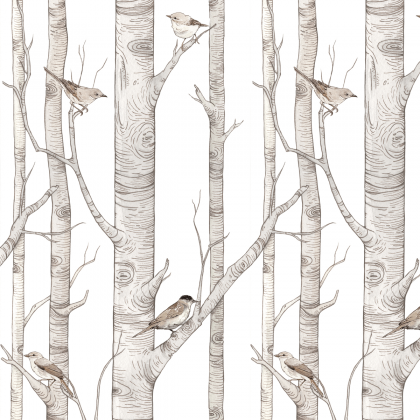 papel pintado Birch Forest