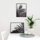 Palm Decorative Print Set