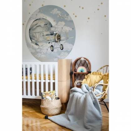 Plane In A Circle Wallsticker