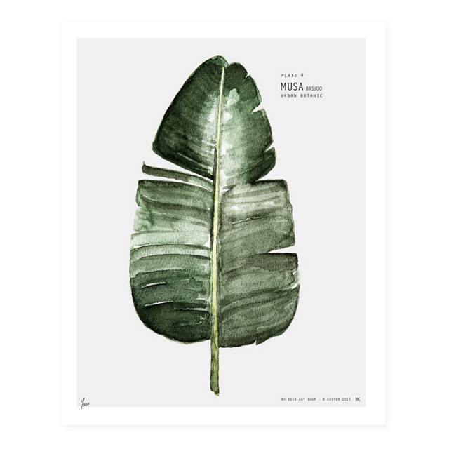 Lámina decorativa Urban Botanic - Monstera